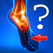 Anatomy Foot Quiz app review