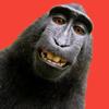 Jason Alvig - Selfie Photobomb artwork