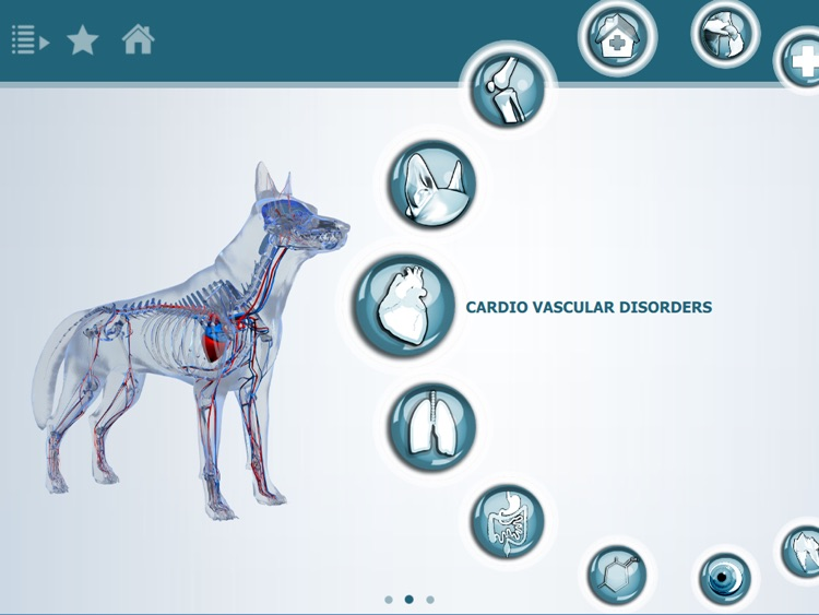 IDEXX Pet Health Network® 3D screenshot-1