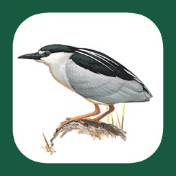 eGuide to the Handbook of Bird Identification for Benelux