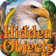Activities of Hidden Objects : Forest Story