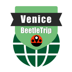 Venice travel guide and offline city map, Beetletrip Augmented Reality Veneto Venice Metro Train and...