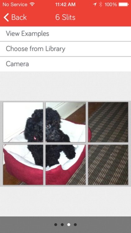 PicSlit – Giant Photo Grid / Banner / Square for Instagram screenshot-3
