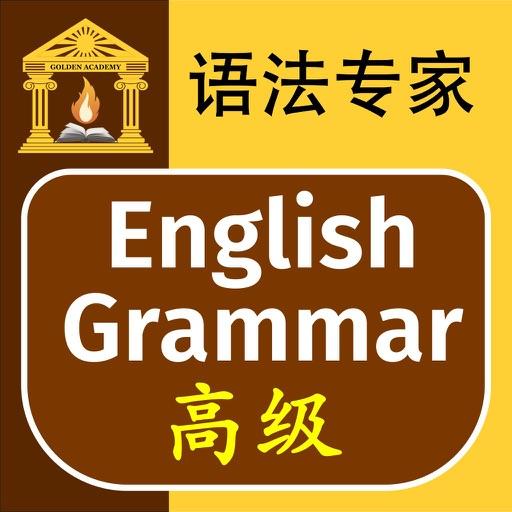 语法专家 : 英语语法 高级