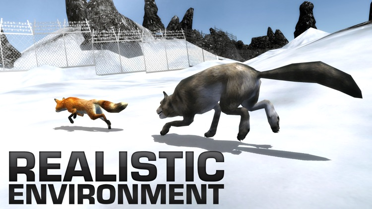 Angry Wolf Simulator – A Wild Animal Predator Simulation Game