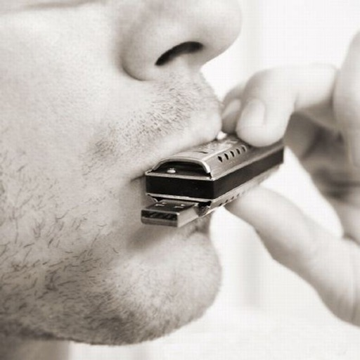 How To Play Harmonica - Harmonica Video Guide