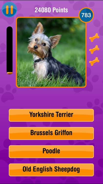 Guess The Dog Breed Free