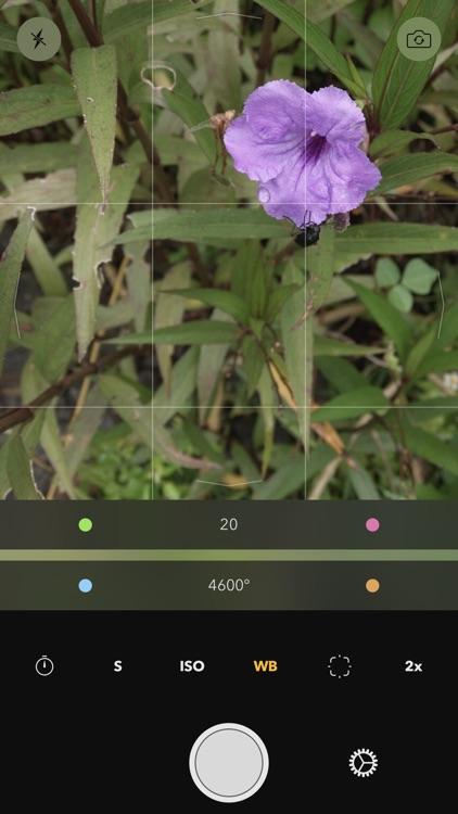 Reuk screenshot-1