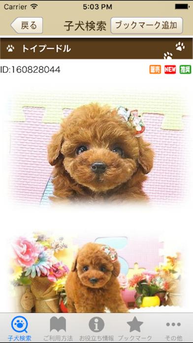 ブリーダーズ~ブリーダーの子犬出産情報ポータルアプリ~のおすすめ画像3