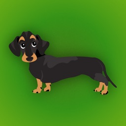 Dachshund Emoji - Black and Tan