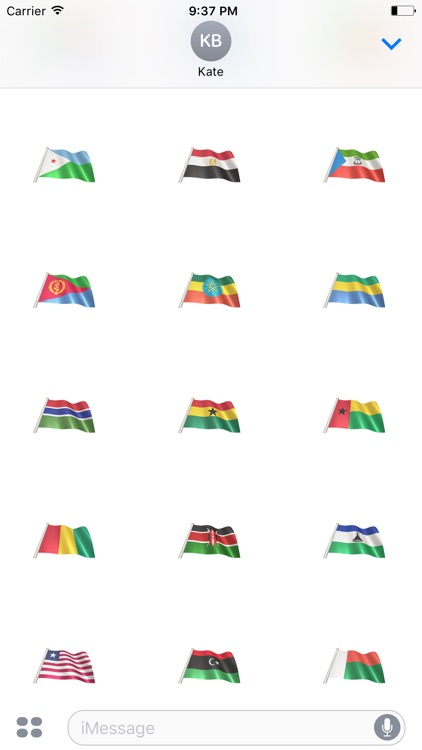 African Flags screenshot-2