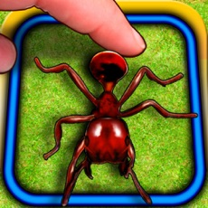 Activities of Ant Hitter