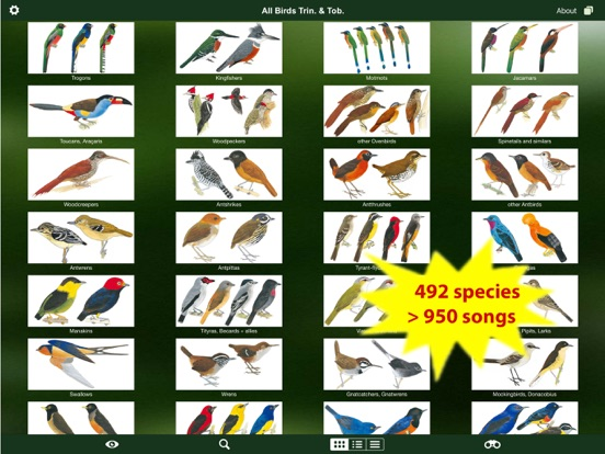A guide to the birds of trinidad and tobago (comstock books.