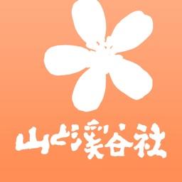 野に咲く花(山溪ハンディ図鑑)