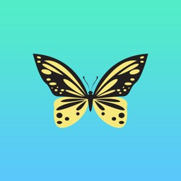 Butterfly Sticker Pack