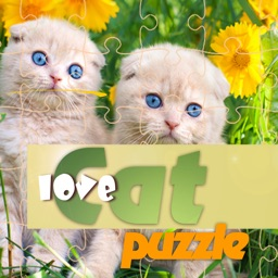 Big cats puzzles jigsaw everyday for adult