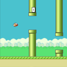 Activities of Flappy Once More