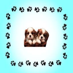 Puppy - Sticker Pack