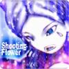 Shooting flower - iPadアプリ