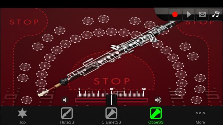 Woodwind instrumentSS screenshot-3