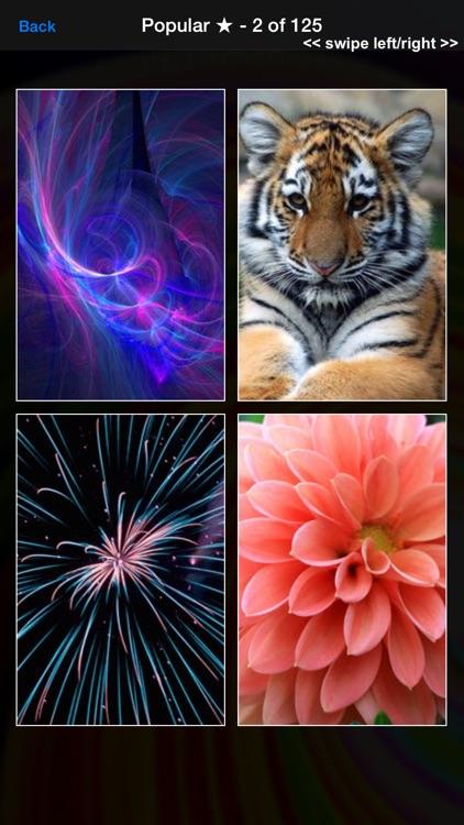 Wallpapers HD - Cool Backgrounds & Wallpaper Maker app image
