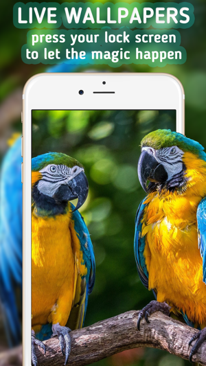 Live Wallpapers For Iphone Animated Wallpapers On The App Store