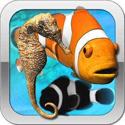 Toddler Sea Fish Jigsaw Puzzle - Kids Learning App
