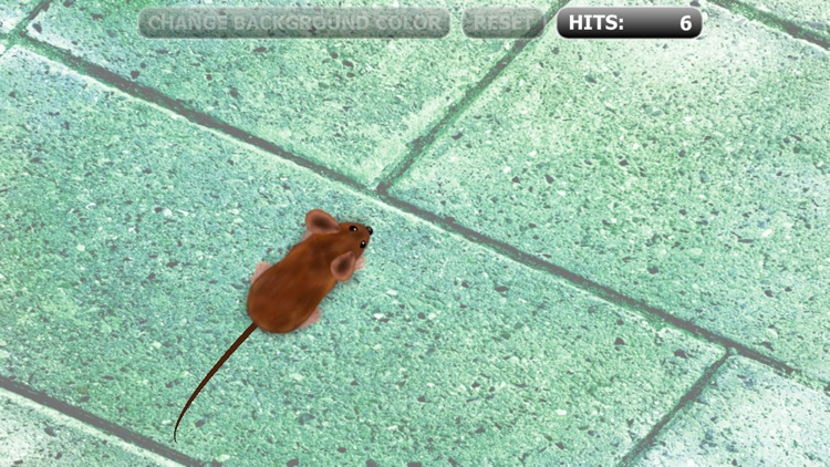 Catch the Mouse Cat Game for iPhone screenshot-1