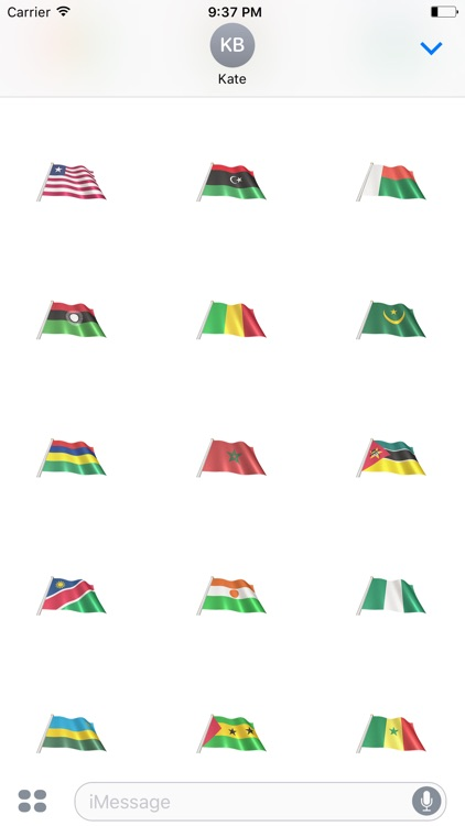 African Flags screenshot-3