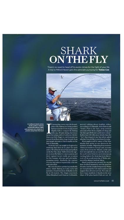 The Field Magazine International