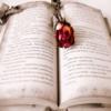 How To Write A Novel # Novel Writing Tips