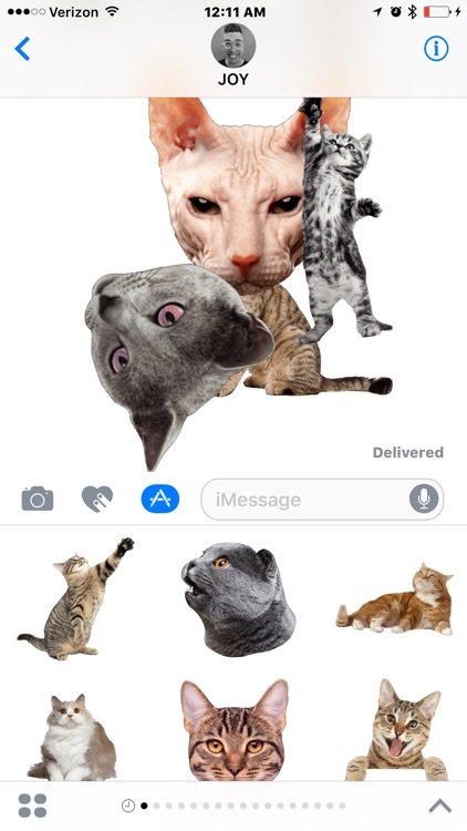 Cat Sticky screenshot-3