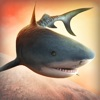 天天 梦幻 鲨鱼 宇宙 冲突 3d