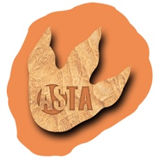 Activities of RAlly Asta