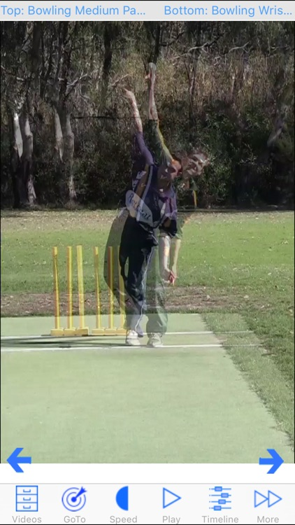 Cricket Coach Plus HD screenshot-2