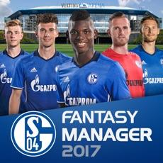 Activities of FC Schalke 04 Fantasy Manager 17 - football club