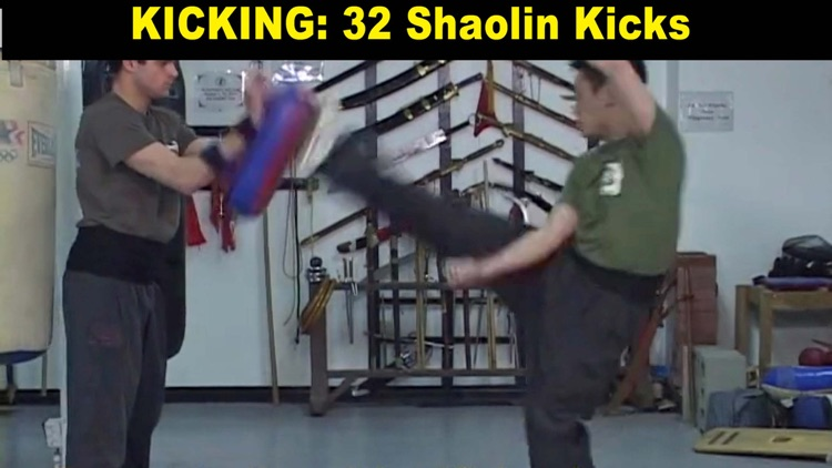 Shaolin Kung Fu Fundamental Training screenshot-4
