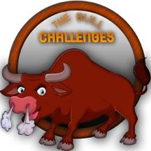 The Bull Challenge - 2017
