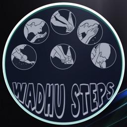 Wadhu Steps