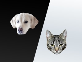 Cats and Dogs Stickers for Messages