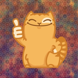 Crazy Kitty Emoji Stickers - for iMessage