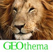 GEOthema: Planet der Tiere