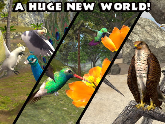 Игра Ultimate Bird Simulator