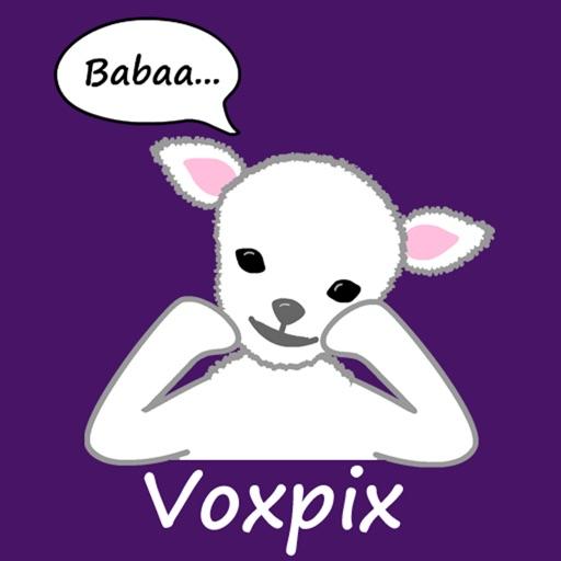 Voxpix