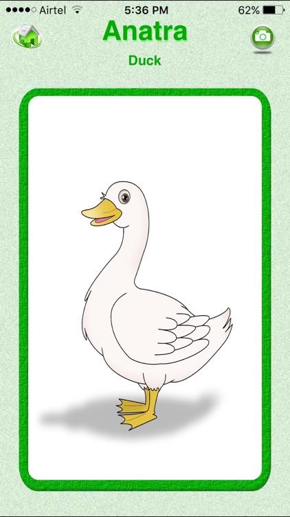 Flashcards Italian Lesson