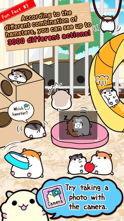 Hamster Collection◆FreeBasic, pet breeding game! screenshot-4