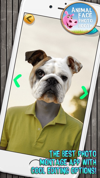 Animal Face Photo Booth with Funny Pet Sticker.s