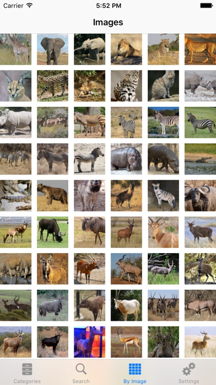 African-Safari Wildlife Guide screenshot-0