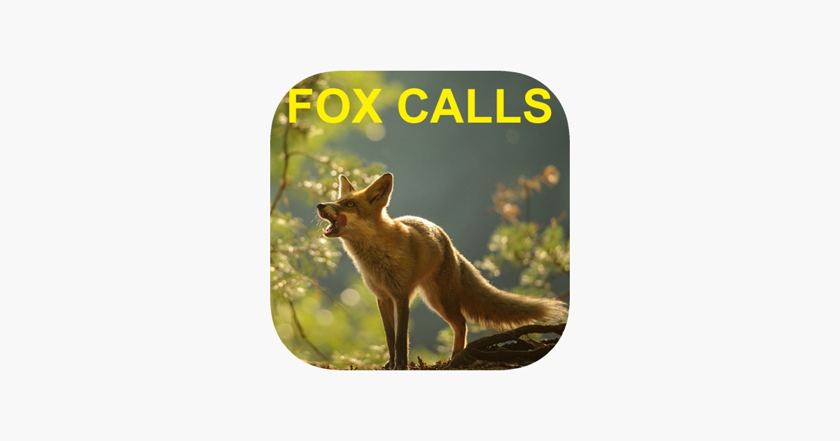 Predator Calls for Fox Hunting & Predator Hunting on the App Store on fox landing, fox running away, fox and coyotes pets, fox and their pups, fox sounds bark, fox north america, fox shedding, fox stealing food, fox looking up, fox pin, fox digging, fox tail up, fox reading, fox charm, fox aggressive behavior, fox being chased, fox behavioral and characteristics, fox and hedgehog, fox crying sound, fox and hen,