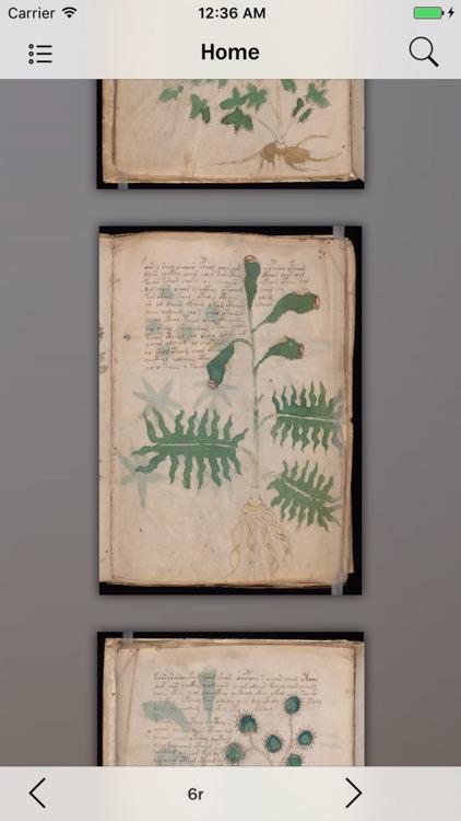 Voynich Manuscript Guide screenshot-4